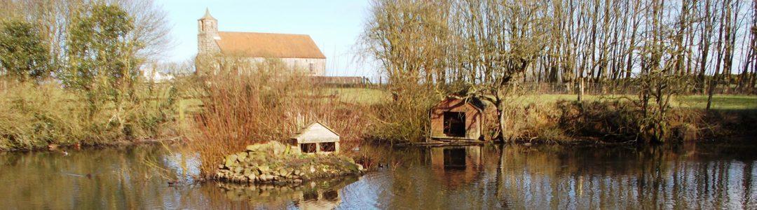 Speeton Pond